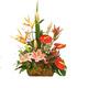 Anthurium, BOP & Lily