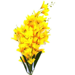 Send flowers to hsr layout online flower deliveryflower bouquet to yellow orchid bunch mightylinksfo