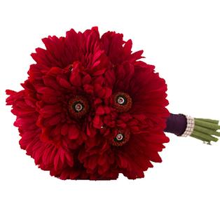 Valentine Gerbera Flowers