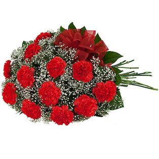Carnation Flowers to Bangalore