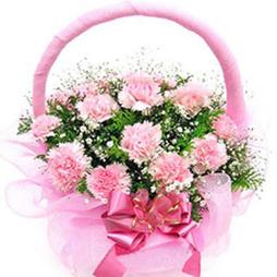 Send flowers basket to bangaloreonline flower basket delivery pink carnation basket mightylinksfo