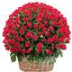 Roses - Mega Basket