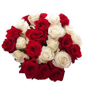 Valentine Red  Roses to Bangalore