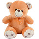 Teddy Bear 9 Inch