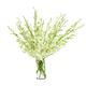 White Orchids Vase