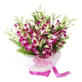 Purple Orchid Flowers to Bangalore