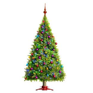 Send Christmas to Bangalore