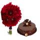 Red Gerbera & Cake