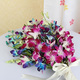 Blue & Purple Orchids Bunch