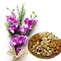 Orchids with Dry Fruits